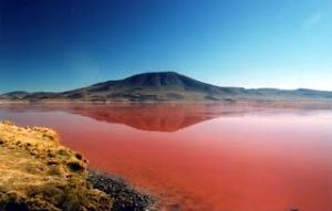 laguna-kolorada